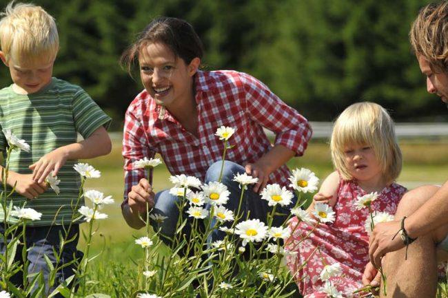 Landurlaub in Niederösterreich